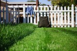 The great (big) American lawn