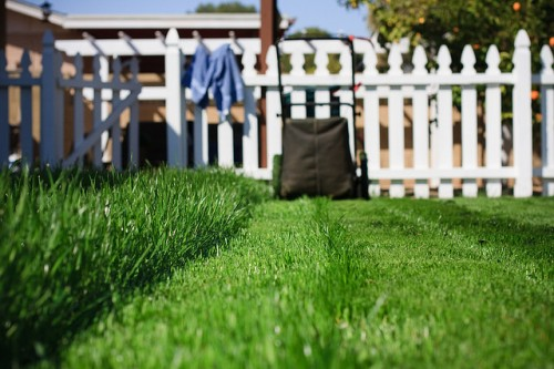 A lawn being mowed